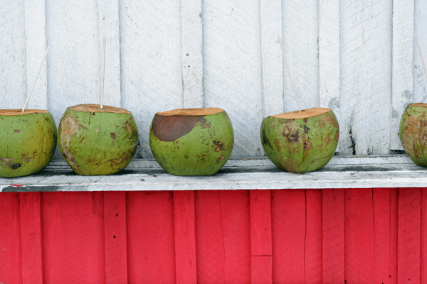 4 Reasons Why Coconut Water is Better for You Than Sports Drinks
