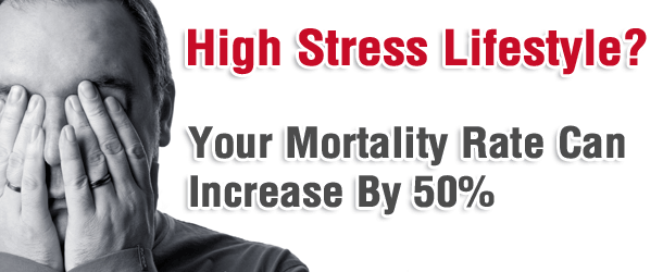 High Stress Lifestyle? Your Mortality Rate Can Increase By 50%