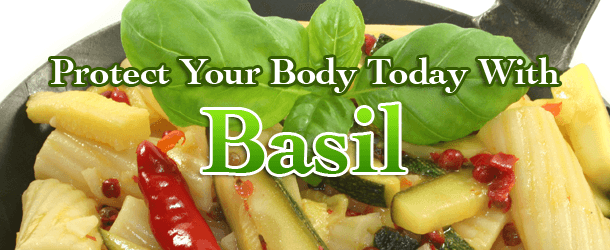 Protect Your Body Today With Basil