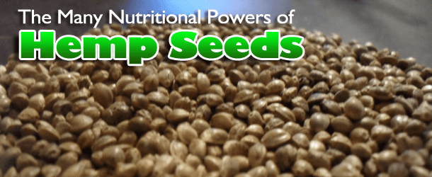 The Many Nutritional Powers of Hemp Seeds