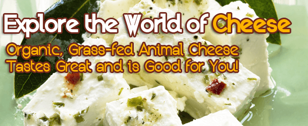 Explore the World of Cheese - Organic, Grass-fed Animal Cheese Tastes Great and is Good for You!
