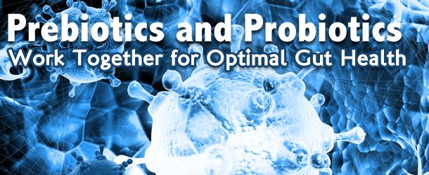 Prebiotics and Probiotics Work Together for Optimal Gut Health