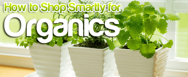 How to Shop Smartly for Organics