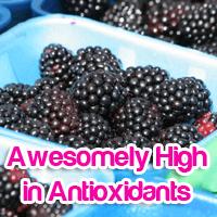Blackberries Top the List of Foods Highest in Antioxidants