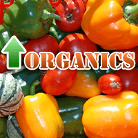 Organic Food Availability and Buying Habits on the Rise