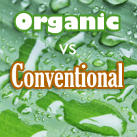 Organic vs Conventionally Grown Foods, Which is Better?