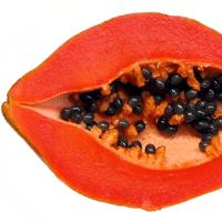 Summer Fruits - Papaya