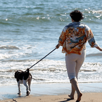 Candida Responsible for Yeast Infections in Postmenopausal Women