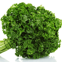 Accelerate Your Antioxidant Intake with Parsley