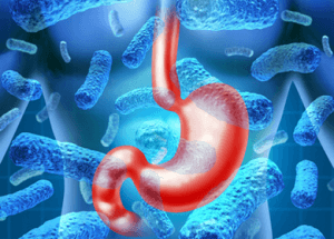 Study Shows Link Between an Unhealthy Gut, Type 2 Diabetes and More [Video]