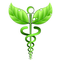 Alternative Therapies Gaining Acceptance with Many Doctors