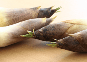 Boost Your Bowel Health with Bamboo Shoots