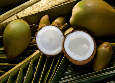 Get Tropically Healthy! The Magical Benefits of Coconuts