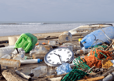 Plastic Debris Killing Wildlife and Seeping Into the Food System