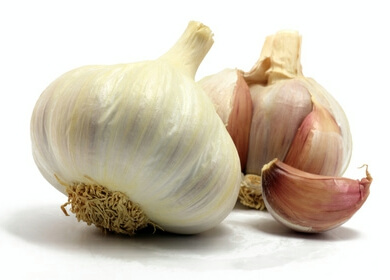Could Garlic Replace Antibiotics as a Major Bacteria Fighter?