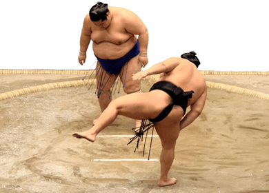Our Circadian Rhythms Train Us to Eat Like Sumo Wrestlers