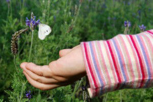 lavender and child
