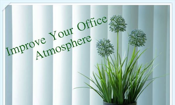 Office plants can improve your well being - Plants can improve ambience home ...