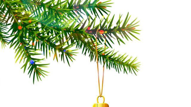 7 Alternatives To Live Christmas Trees