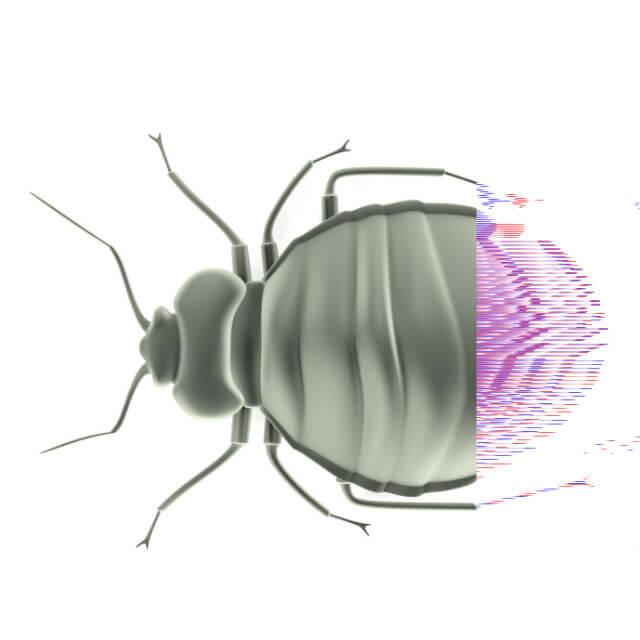 seemingly innocent bed bugs transmit dangerous pathogen. Black Bedroom Furniture Sets. Home Design Ideas