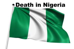 Nigeria flag with fabric structure on white background