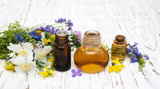 Plant oils can help you sleep - Plants that help you sleep natures soothing effect ...
