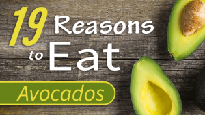 eat avocados