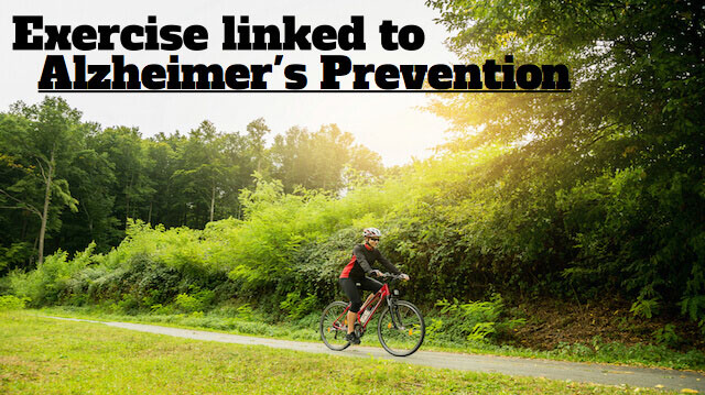 New Studies Confirm: Exercise Not Only Prevents Alzheimers, It Works as a Treatment Too