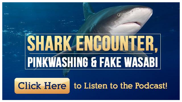 SharkEncounterPinkwashingFakeWasabiPodcast