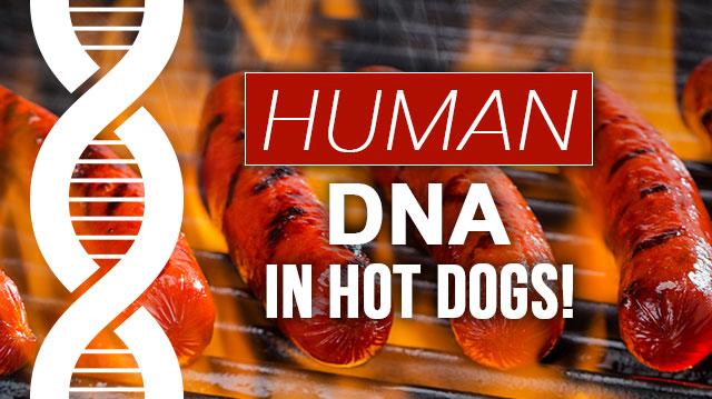 humanDNAhotdogs_640x359