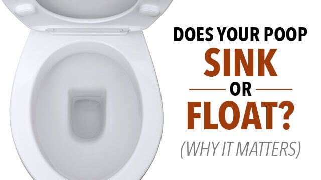 Does Your Poop Sink Or Float Amp Why It Matters