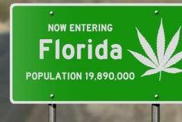 Florida highway sign with marijuana leaf