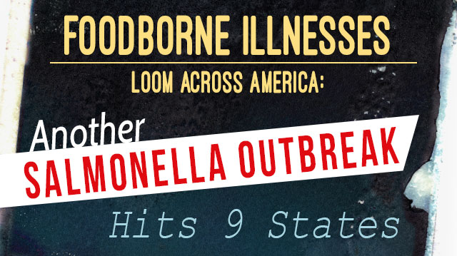 AnotherSalmonellaOutbreakHits9States_640x359