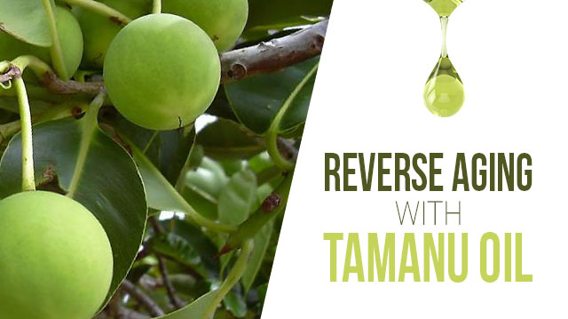 ReverseAgingwithTamanuOil-_640x359