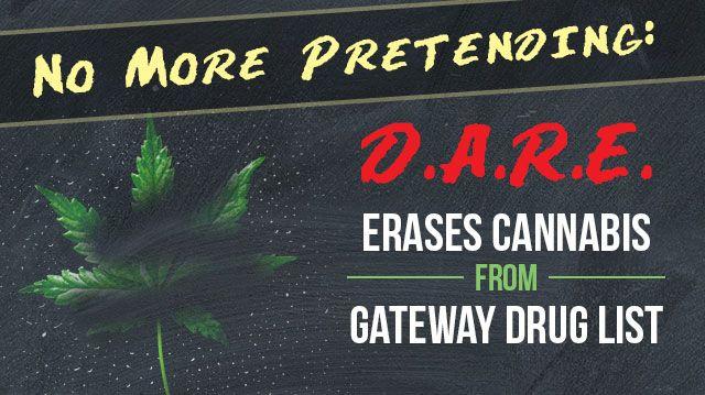 No More Pretending Dare Says Cannabis No Longer A Gateway Drug