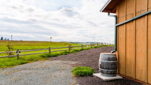 Water Conservation : Rain Barrel