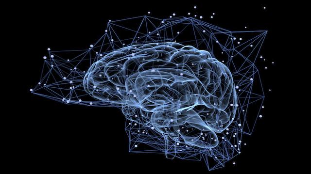 Brain activity