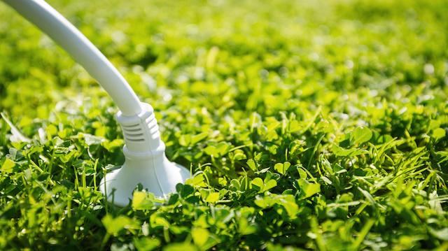 Power plug. Green energy concept