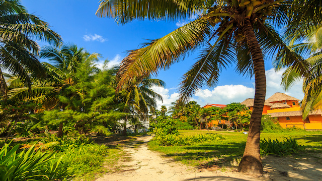 vacation in Caye-Caulker, Belize