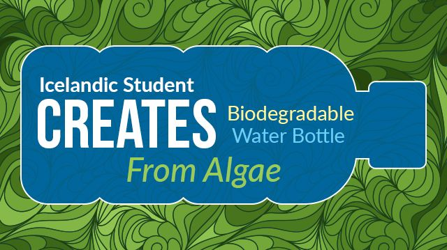 72c61a13fc Icelandic Student Creates Biodegradable Water Bottle From Algae