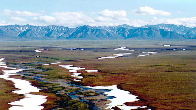 Arctic National Wildlife Refuge and Preserve