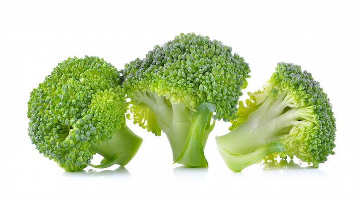 fresh broccoli isolated on white background .