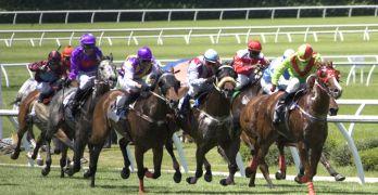 middle-schooler-rescues-racehorse