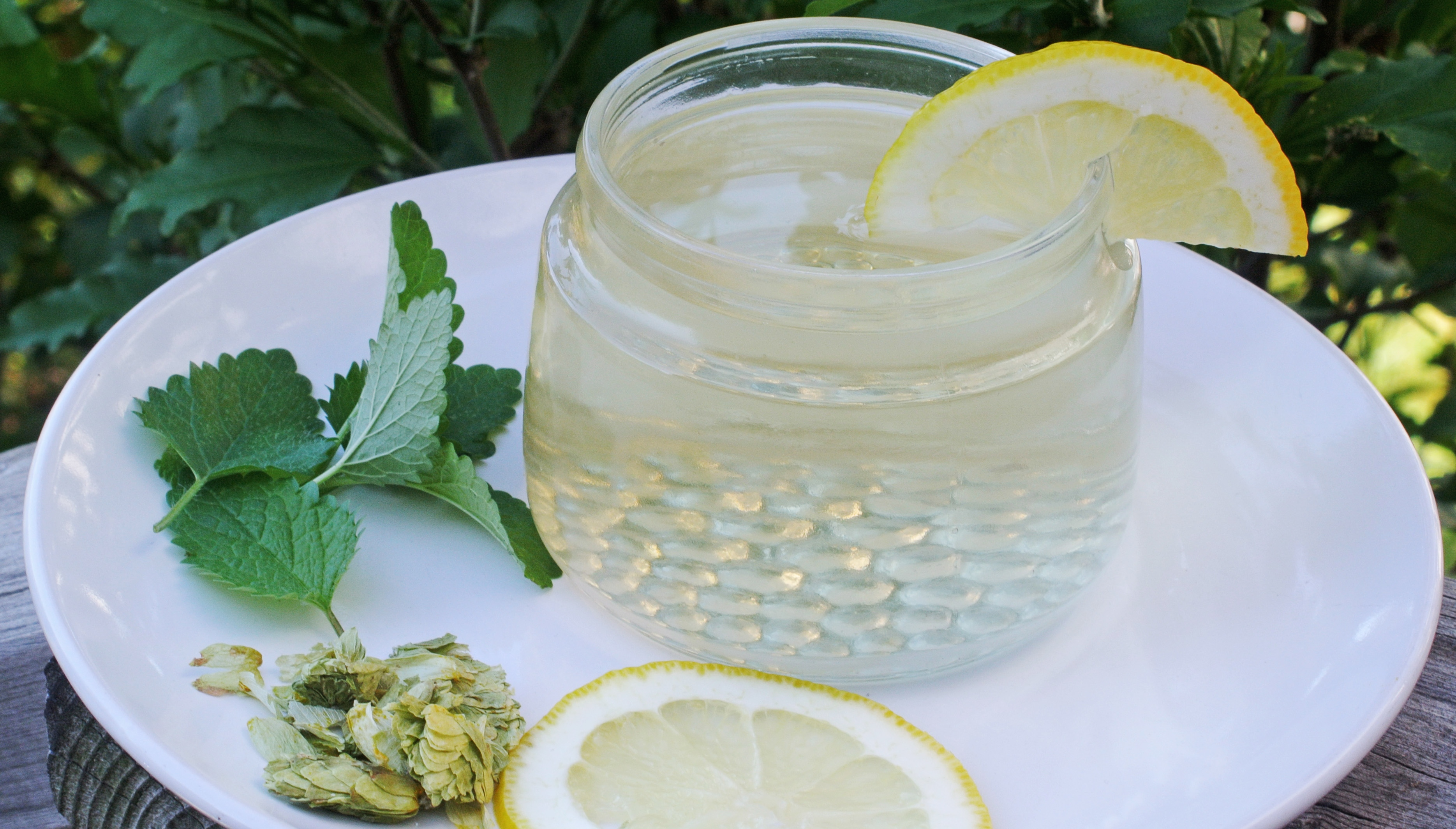 homemade-lemon-balm-tea