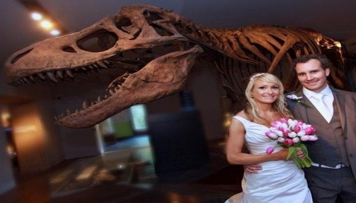 the-dinosaur-museum