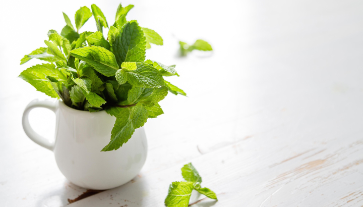 how to use peppermint leaves