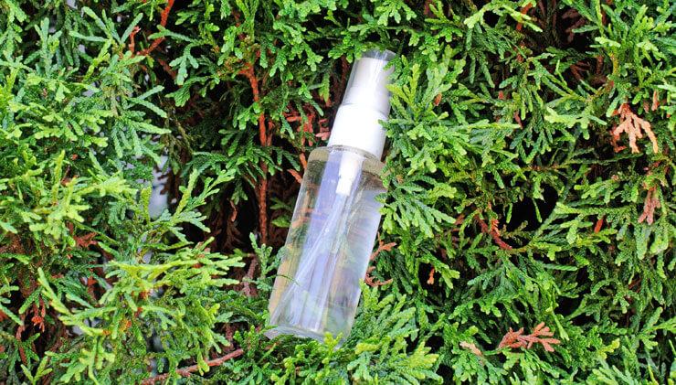 natural-bugspray