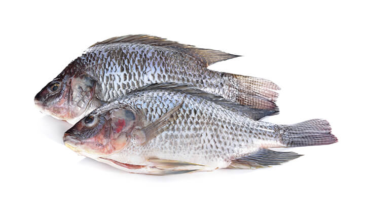 Avoid these toxic chinese foods for Cod fish mercury