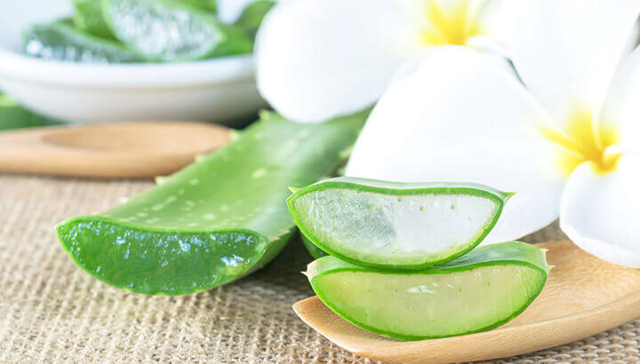 Home Remedies Aloe Vera