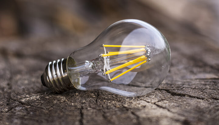 Energy Efficient Light Bulbs Are Toxic